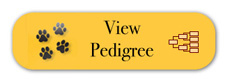 pedigree-button.jpg