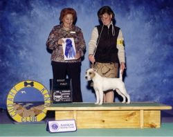 2005 Group One Breeder/Owner/Handler