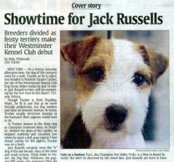 February 2001 USA Today breed write up featuring Fuzz